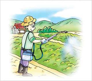 거름주기와 병해충 관리:일반적으로 토양이 건강하고 기름져야 가꾸는 채소도 튼튼하다. 우리 주변에서 옥상텃밭을 만들었지만 몇 년 안가서 포기하는 분들이 많다. 이는 대부분 거름 주는 관리가 어려워 포기하는 경우가 많다. 이는 대부분 거름 주는 관리가 어려워 포기하는 경우가 많다. 가장 흔한 방법은 화원이나