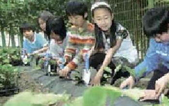 스쿨팜의 효과:학교 및 교육기관과 같은 공간에서 동식물을 가꾸고 이용하는 과정은 학교 공동체의 구성원에서 환경에 이르기까지 광범위하게 영향을 줄 수 있다. 공동체 구성원은 적용방법에 따라 학생뿐만 아니라 교사, 학부모 및 지역 주민까지 확대시킬 수 있다. 스쿨팜을 운영함으로써 학생들은 학교 수업을 실습과 체험을 통해 이러한 과정을 통해 자연을 사랑하는 마음을 가지게 된다.