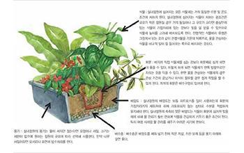 실내공간 장식:실내공간에서 식물을 이용한 장식은 공간의 배치, 규모, 동선을 효율적으로 사용할 수 있는 기능적인 측면, 좀 더 아름답고 편안함, 쾌적함을 느끼고자 하는 현대인의 필요가 반영된 것이다. 최근 식물을 활용한 실내장식에 관심이 커짐에 따라 그 형태나 방법이 다양화되고 있다. 한편 실내공간은 광, 온도, 습도 조건이 식물 생육에 적합하지 않을 수 있으므로...