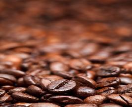 자원순환, 커피퇴비와 도시농업:자원순환 커피퇴비와 도시농업       백혜숙 사회적기업 에코 대표자연순환은 작은 순환의 결합으로 둥글게 빙글빙글 돌면서 앞으로 나아가는 과정