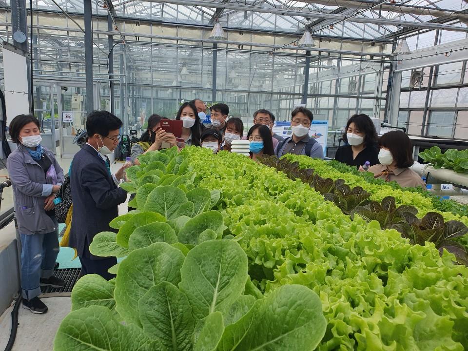[2021] NMC_6기 도시농업전문가(스마트팜특화)교육 및 유기농기능사 준비반 교육