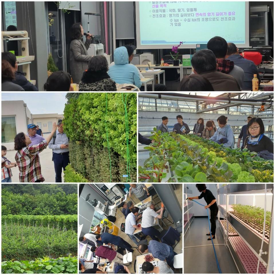 '21여름Iinspiration=NMC_9기 도시농업(스마트팜)전문가과정 참여자 모집