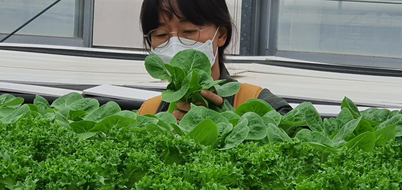 NMC_10기  도시농업전문가(스마트팜전문가)양성과정(11기, 12기일정포함)